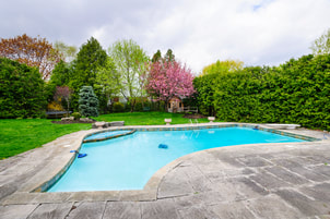 Picture of backyard pool with regular concrete decking.  Redbud tree in the background along with other green trees.